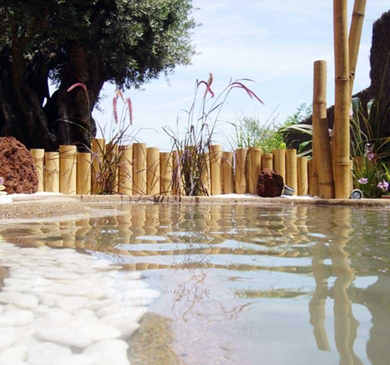 diseño de jardines. fuente estanque